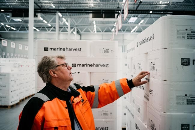 Tom Mikkelsen, head of air freight at Marine Harvest in Norway, checks the label of the packaged seafood at its facility in Oslo. The box of fresh salmon will be on DHL's next flight to Seoul.