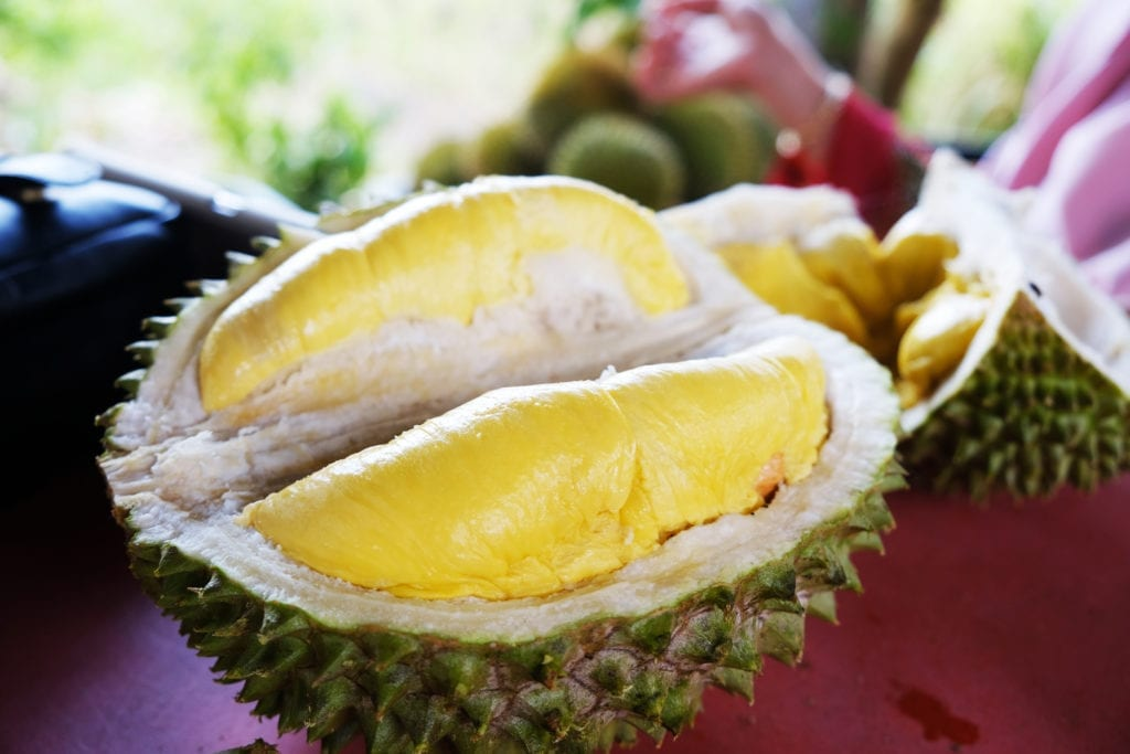 The distinctive smell of durian is often compared to old socks and rotten rubbish.