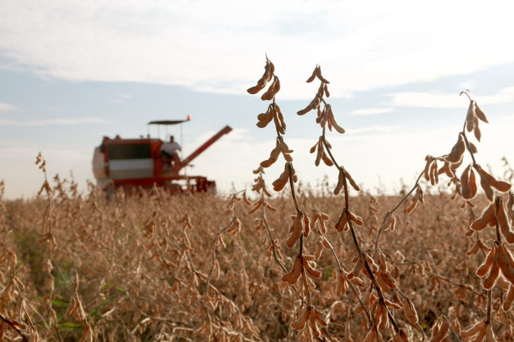 Patience is wearing thin among American soybean farmers.