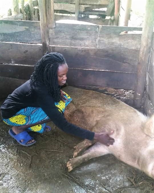 Nakkazi Proscovia (or Prossie) in her pig farm