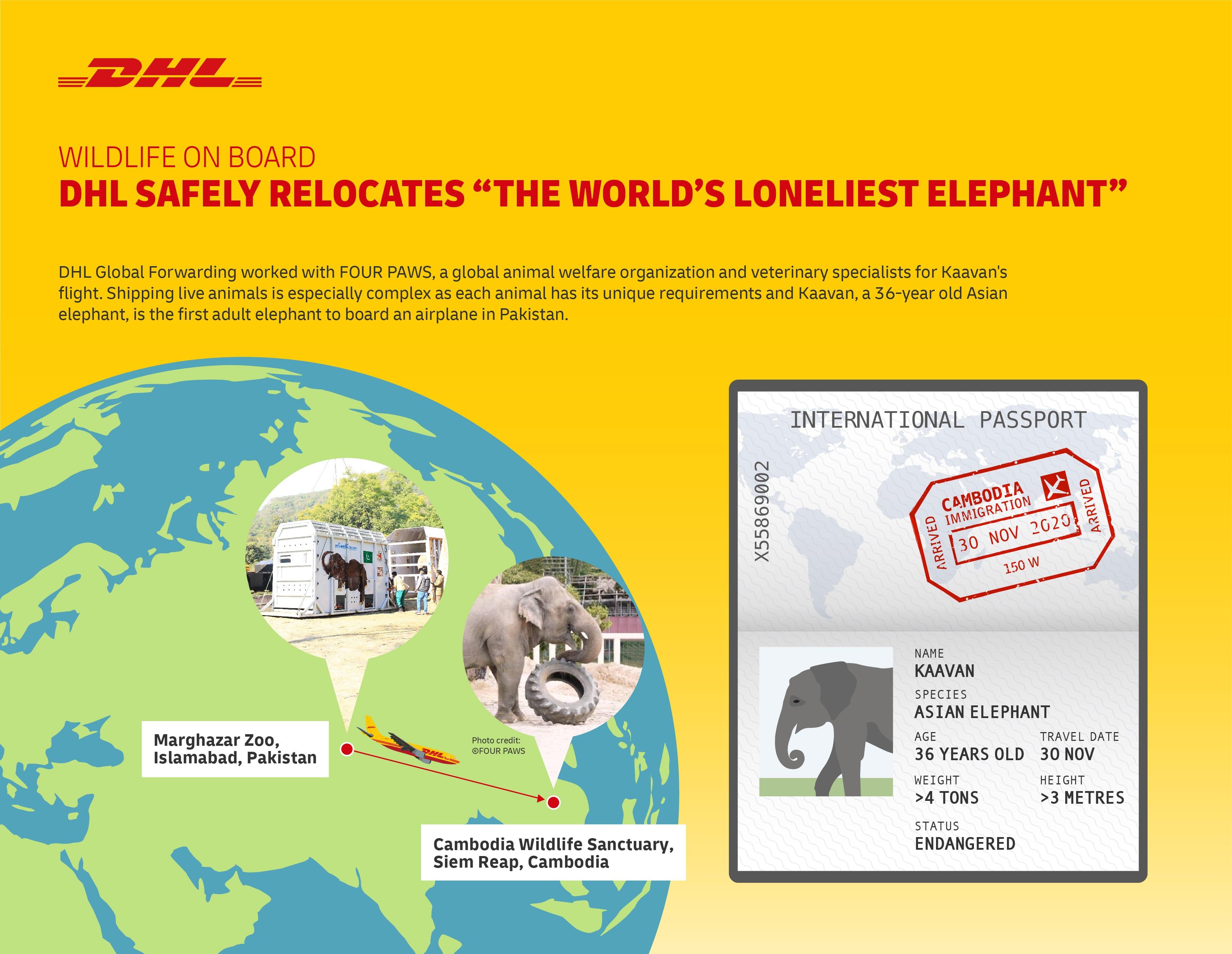 DHL_Kaavan move logistics infographic