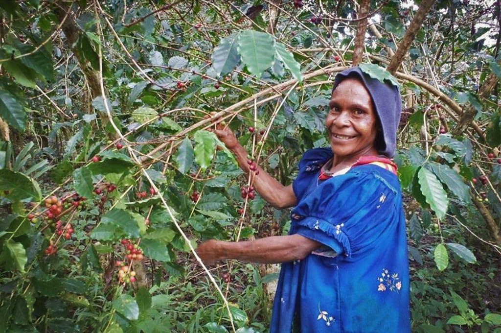 Papua New Guinea coffee farmers