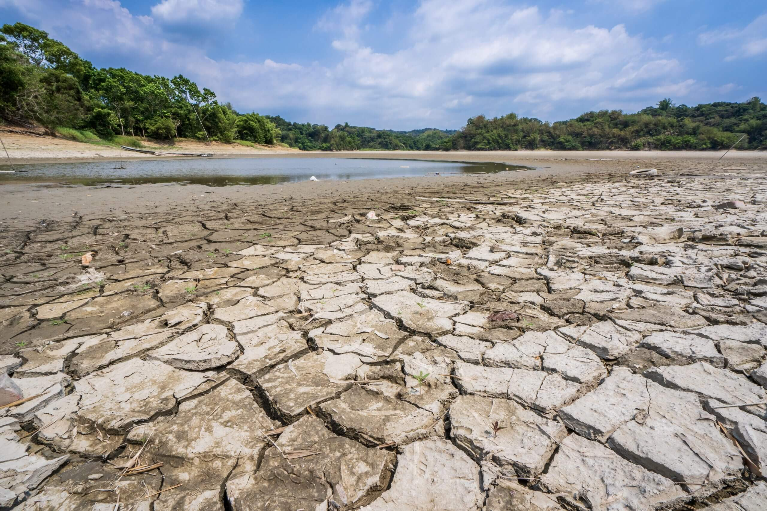 Taiwan was hit with one of its worst droughts in 56 years.